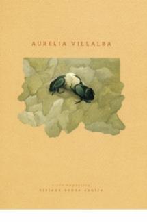Visiones de Aurelia Villalba